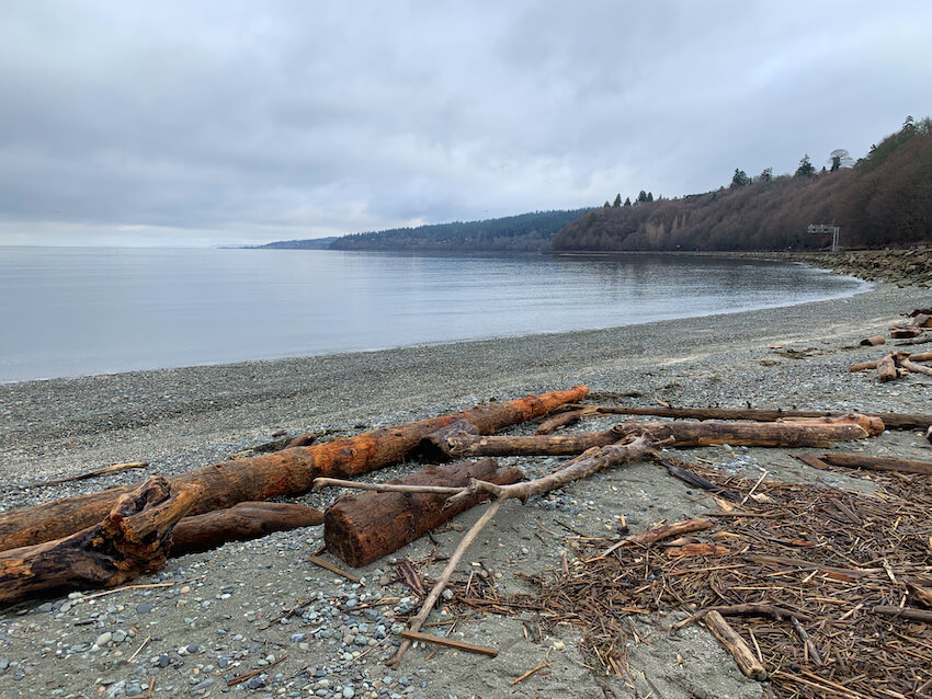seattle breweries and hikes carkeek