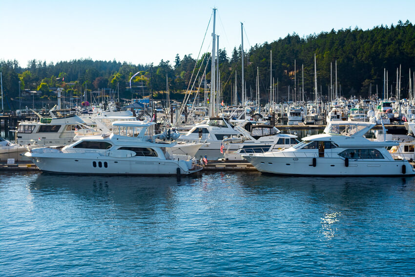 Kona Diving Company >> A Guide to Visiting San Juan Island • Postcards to Seattle