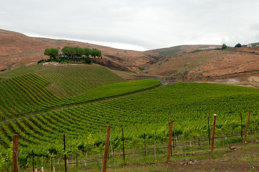 visiting yakima winery
