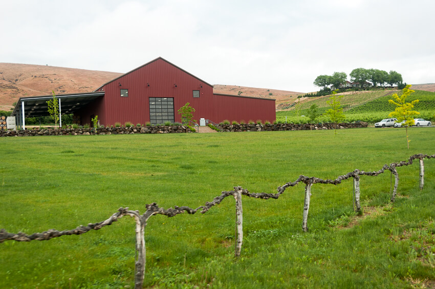 visiting yakima vineyard