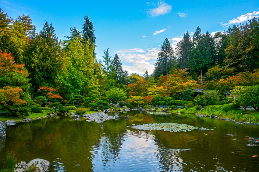 instagrammable spots in seattle japanese gardens