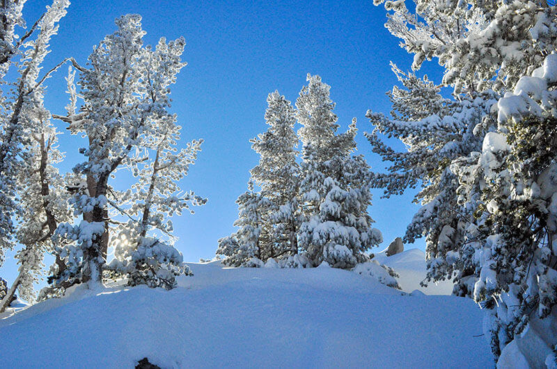 what to pack on a ski trip snow