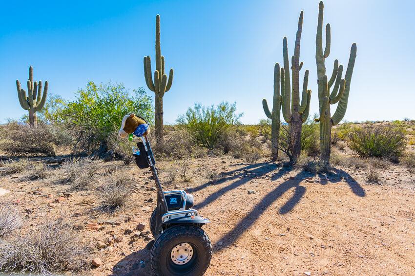 arizona spring break segway