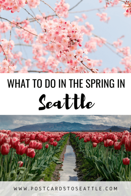 The Best Things to Do in Seattle in Spring in 2021
