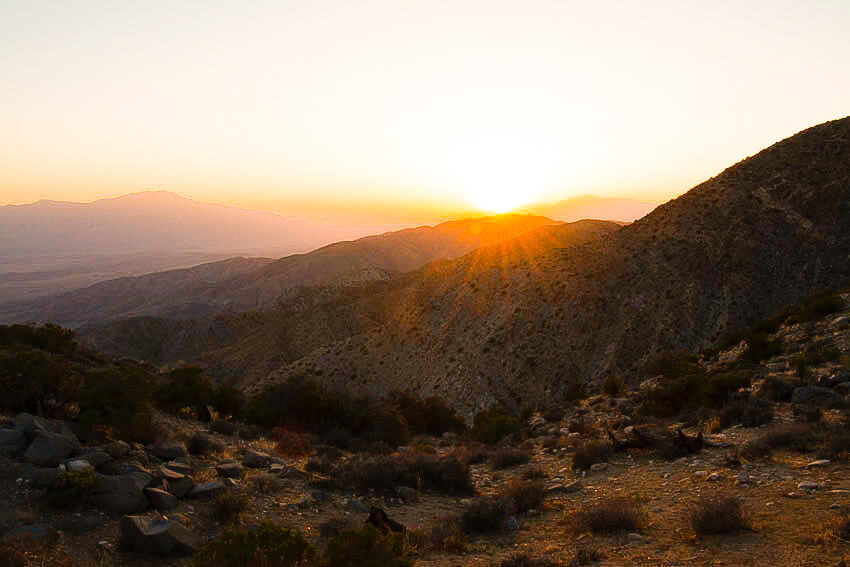 one day in joshua tree sunset