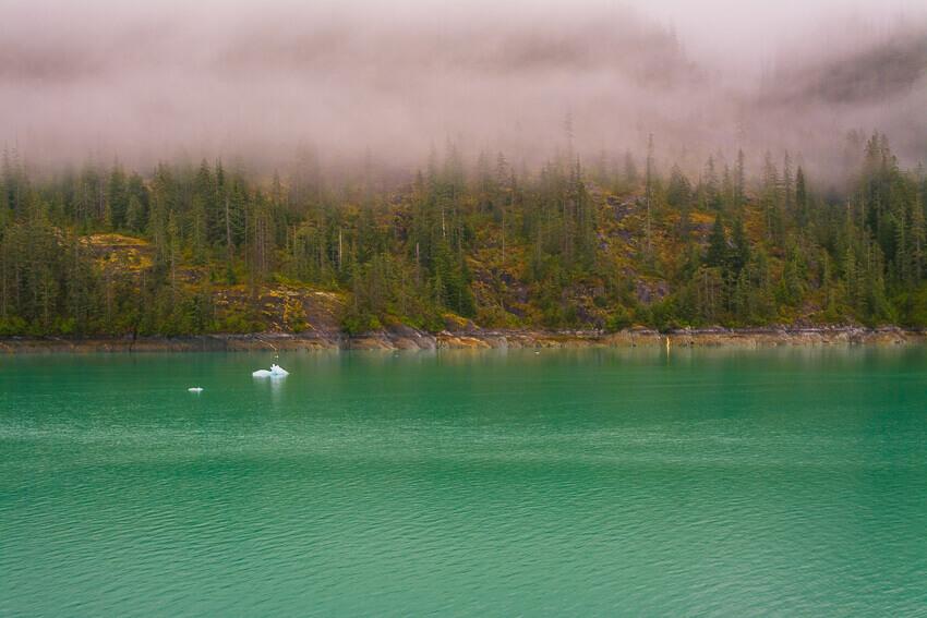 spring in alaska fog