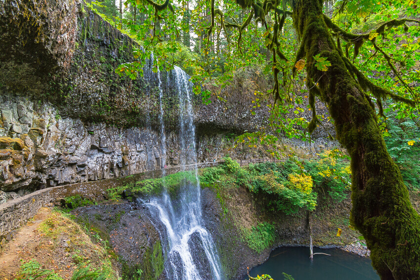 things to do in willamette valley silver falls