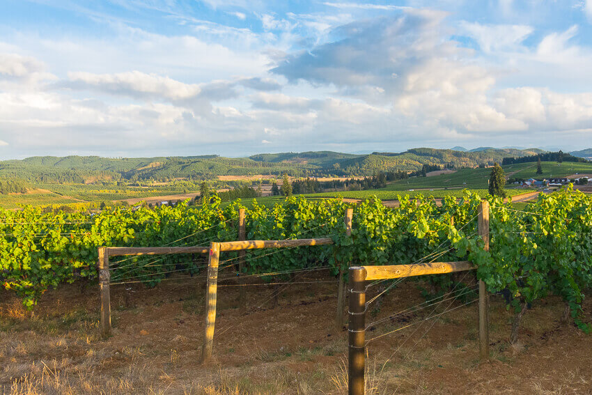things to do in willamette valley winery sunset