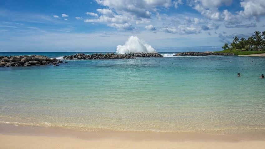 things to do in kona hawaii swimming