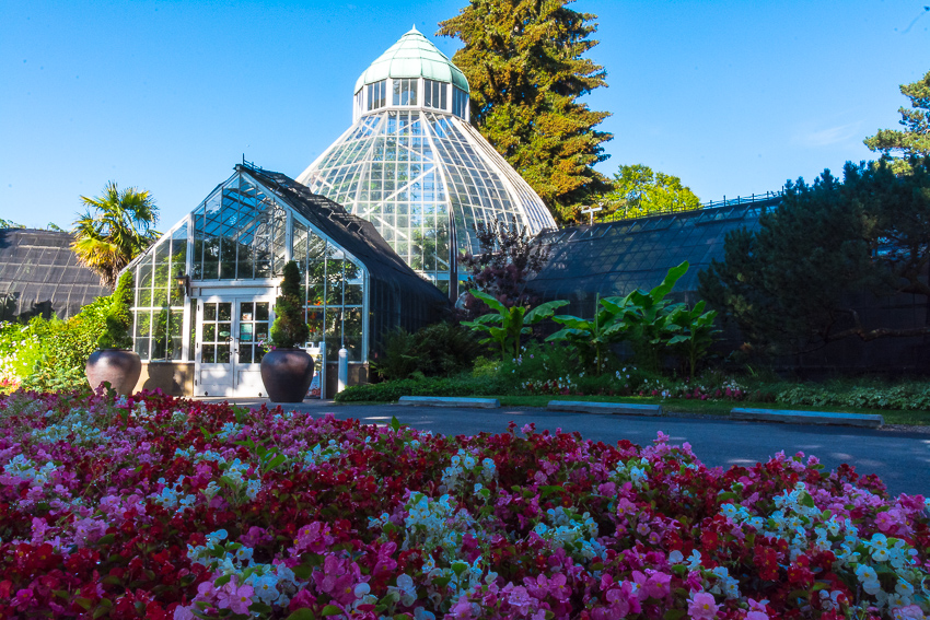 tacoma conservatory