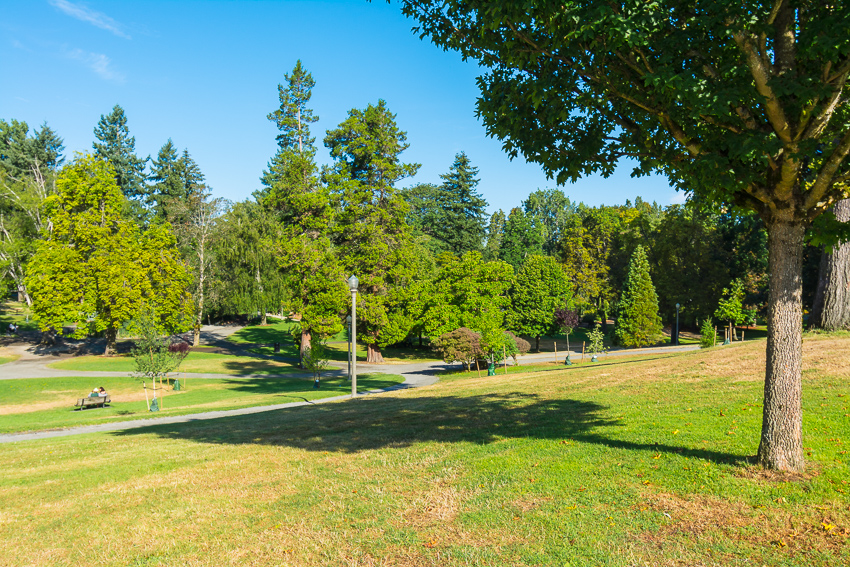 things to do in tacoma park