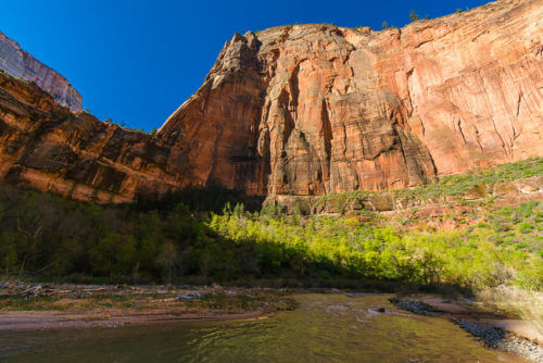 easy hikes in zion national park
