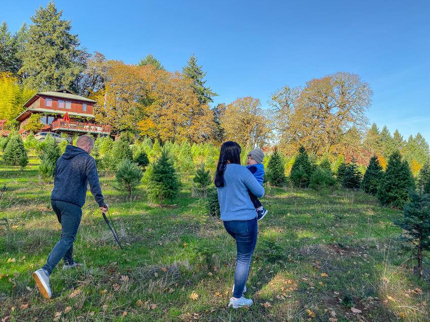 willamette valley donovans place tree farm