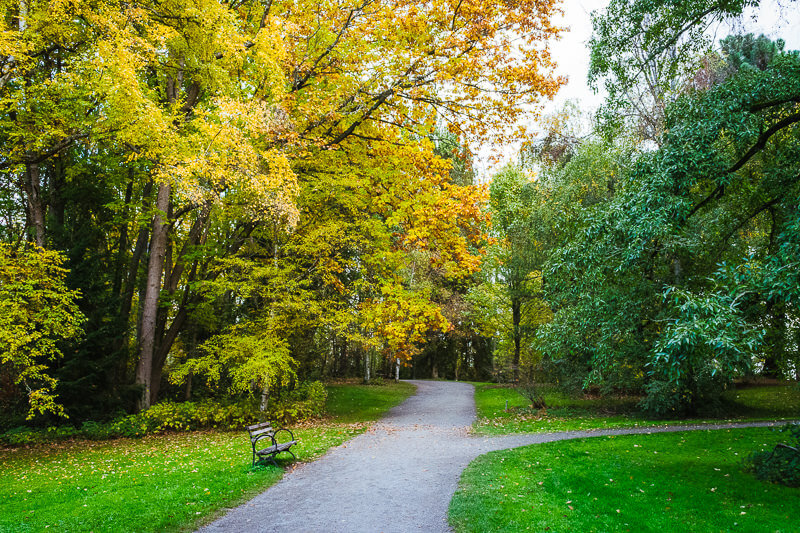 Seattle arboretum