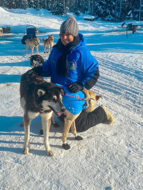 sled dogs winter activities fairbanks