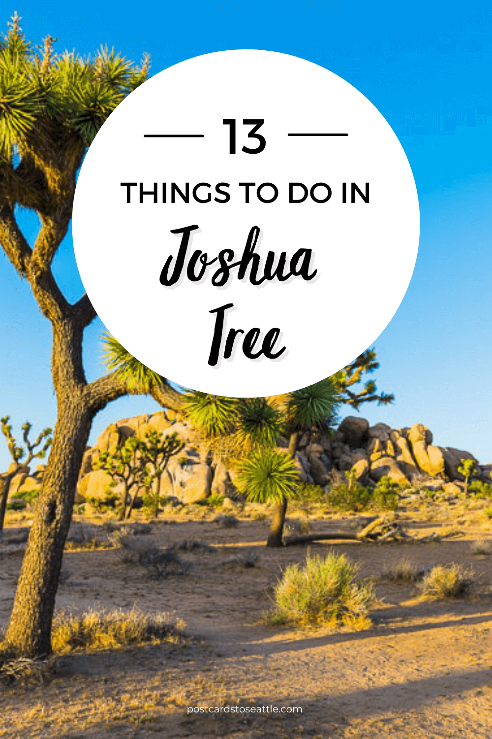 How to Plan the Ultimate Joshua Tree Day Trip