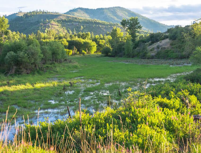 spokane yellowstone road trip