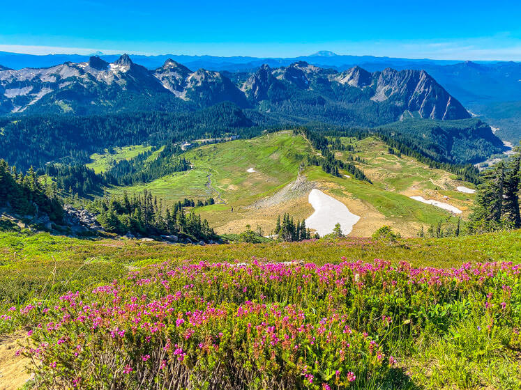 one day at mount rainier national park