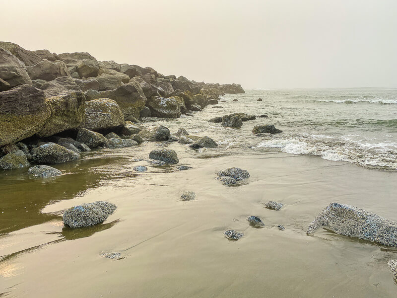 things to do in ocean shores north jetty