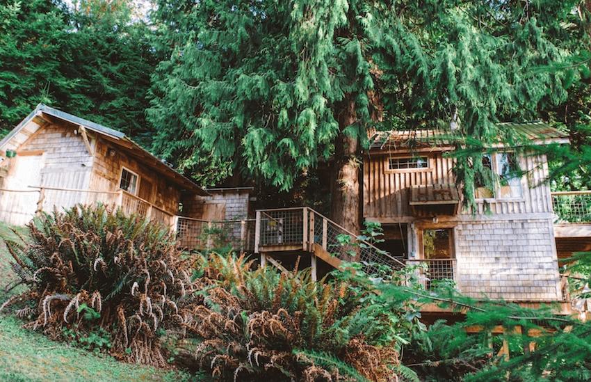 Beachfront Treehouse Vashon Island