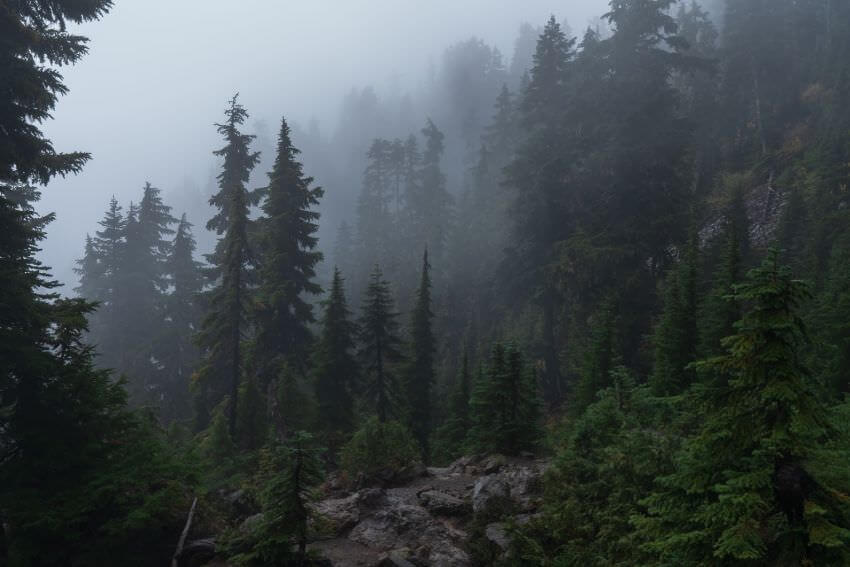Mount Ellinor