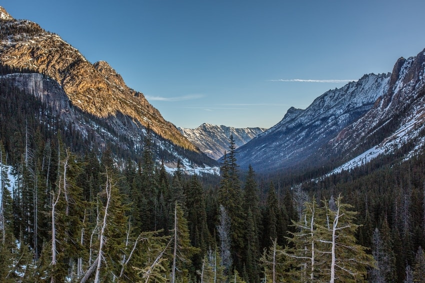 Trees And Mountains In North Cascades
