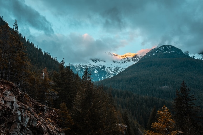 Trees In Mountain Valley In North Cascades