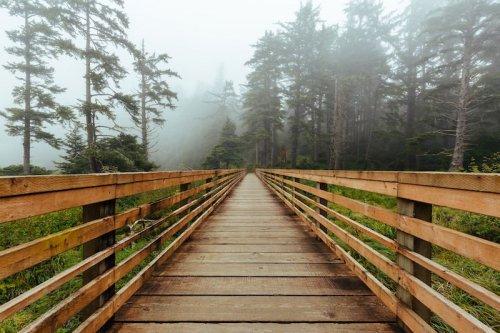 scenic drives in Washington State bridge