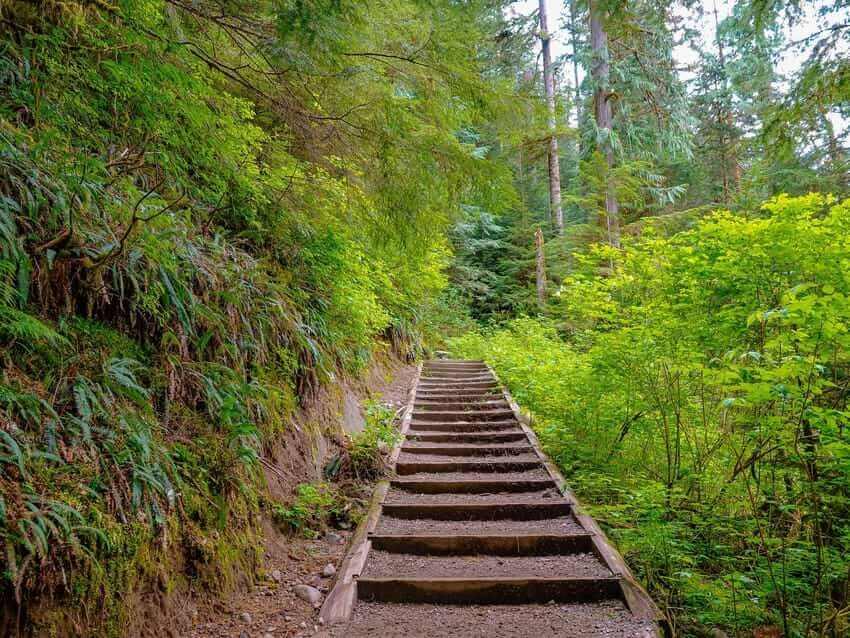Easy Hikes In Washington Trail